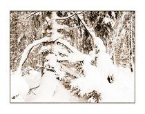 Winter 10 von Theo Broere