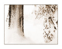 Winter 11 von Theo Broere