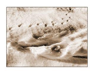Winter-13-kopie