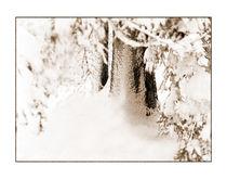 Winter 14 von Theo Broere