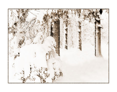 Winter-15-kopie