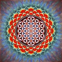 Blume des Lebens - Roter Lotos von Dirk Czarnota
