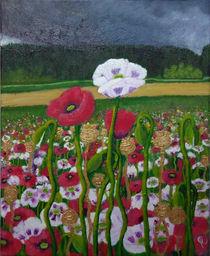 Mohndorf Poppies by Yvonne Kramreiter