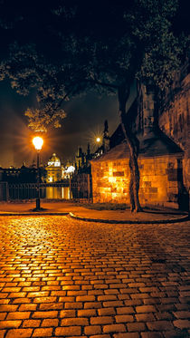 Under the Charles Bridge by Tomas Gregor