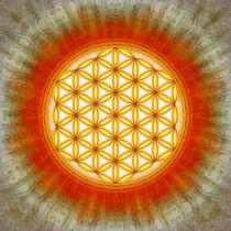 Blume des Lebens - Sonne II von Dirk Czarnota