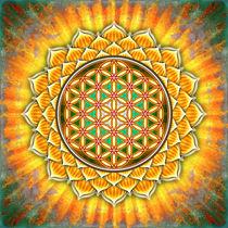Blume des Lebens - Gelber Lotos von Dirk Czarnota