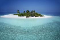 Unbewohnte Malediveninsel | Uninhabited Maldive Island  von Norbert Probst