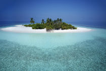 Unbewohnte Malediveninsel | Uninhabited Maldive Island  by Norbert Probst