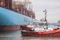 Containerschiff beim Anlegen - Hafen Hamburg von gini-art