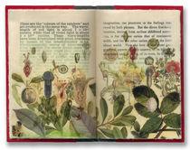 Springbook by jwstewart