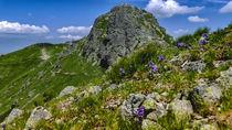 Beskid, Western Tatras, Poland by Tomas Gregor
