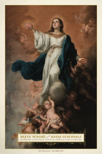 Beata Vergine della Massa Cerebrale von ex-voto