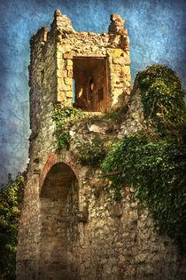 Turret at Wallingford Castle von Ian Lewis