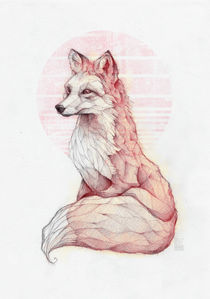 Vulpes Vulpes by Mike Koubou