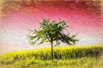 Baum by mario-s