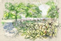 Münster – Aseewiese im Sommer mit Fahrrädern und Aaseekugeln von Münster Foto