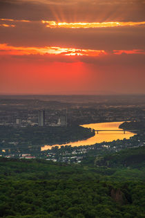 Sonnenuntergang  bei Bonn by Frank Landsberg