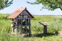 Bienenhotel von Thomas Schwarz