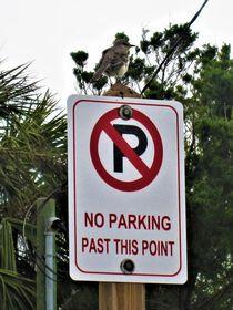 no parking .. parken verboten  von assy
