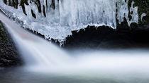 Ice  von Dennis Heidrich
