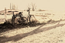 Stille Fahrräder von Ulrike Haberkorn