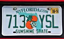 Autokennzeichen FLORIDA by assy