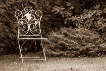Metallstuhl im Garten von Thomas Schwarz