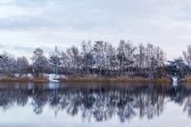 Winterliches Seeufer by Thomas Schwarz