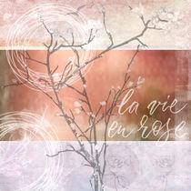 La Vie En Rose by carmenvaro-fotografie