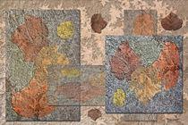 Mauerputz mit Laub von garrulus-glandarius