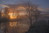 Nebelstimmung an der Trave by Andrea Potratz