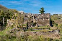Burg Dalberg 80 von Erhard Hess