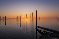 Sonnenaufgang auf der Halbinsel Höri bei Moos II - Bodensee von Christine Horn