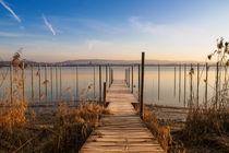 Bootssteg in Iznang auf der Halbinsel Höri - Bodensee by Christine Horn