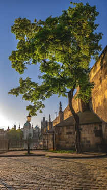 Morning under the Charles Bridge by Tomas Gregor