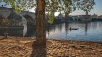 Under the Charles Bridge von Tomas Gregor