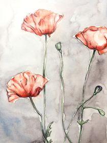 Mohnblumen Aquarell von Chiara Sarto