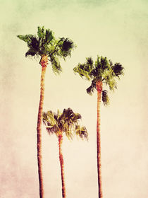 PASTEL PALM TREES no2 by Pia Schneider