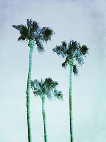 PASTEL PALM TREES no3 by Pia Schneider