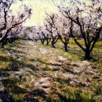 Cherry Trees von Pola Art