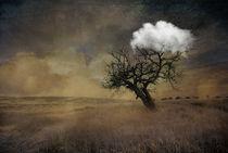 Tree von dreamyfaces