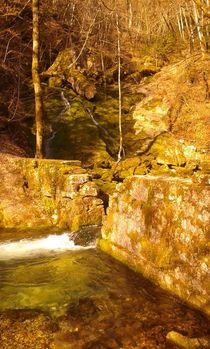 Herbst neben Genf von Eva Urban