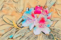 Rhododendron by mario-s