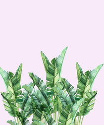 Banana leafs over pink background von dreamyfaces