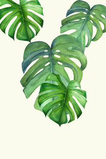 Monstera leafs by dreamyfaces