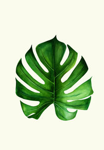 Monstera leaf by dreamyfaces