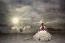 White Wings by garrulus-glandarius