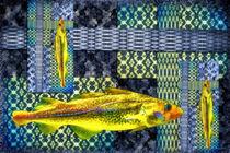 Tapetenfisch by garrulus-glandarius
