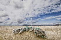 the rope by Peter Moser