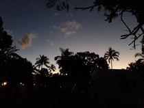 tropical sunset von istarzewska